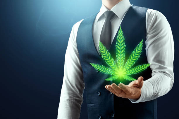 recreational marijuana dispensaries