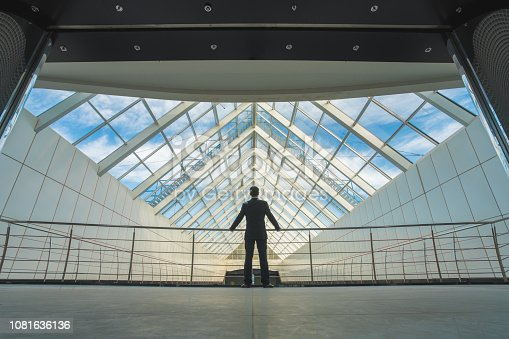 istock The businessman stand on the office hall 1081636136