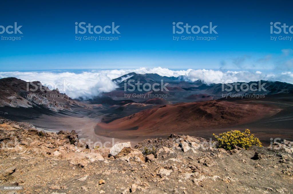 The caldera at Haleakala with clouds creeping in and a single plant in the foreground. stock photo