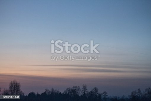 istock The calm beautiful sunset sky over the forest 636299208