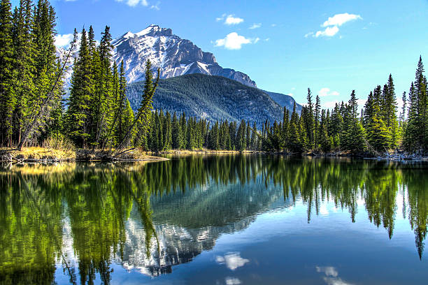 the calm bow river - mountain stock photos and pictures