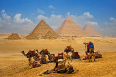 The camel caravan is in front of the Egyptian pyramids.