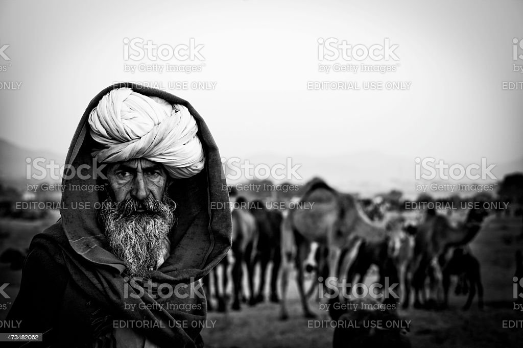 The camel trader stock photo