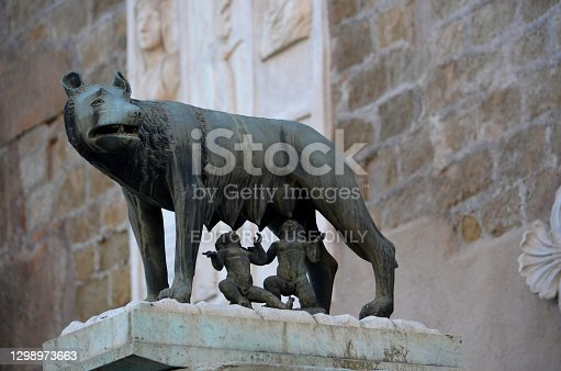 Rome, Italy, February 14, 2019 - The bronze sculpture of the Capitoline Wolf (Lupa Capitolina) suckling the twins Romulus and Remus on the column at the northern corner of the Palazzo senatorio as a symbol of Rome, Italy.