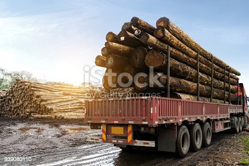 istock The car carries wood in a wood processing plant 939080110