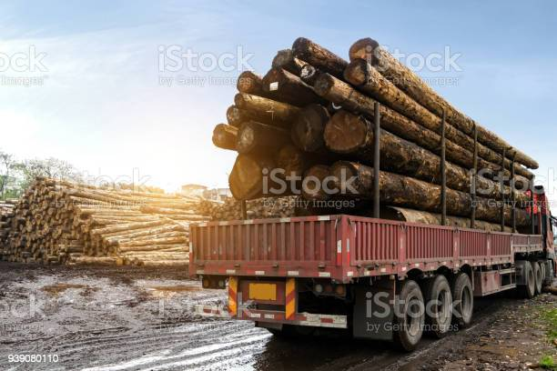 Photo of The car carries wood in a wood processing plant