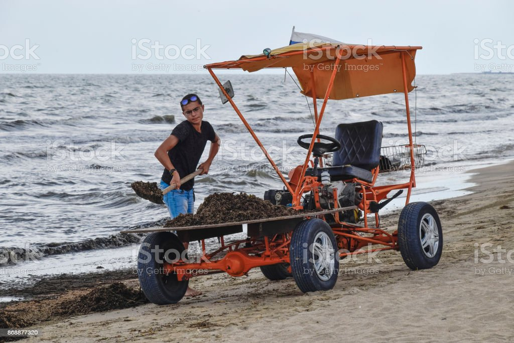 The car for garbage collection from the beach. Cleaning on the beach, clean beach from mud and waste stock photo