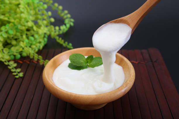 Der Kaspische Meer Joghurt, den ich eine Minze befestigt – Foto