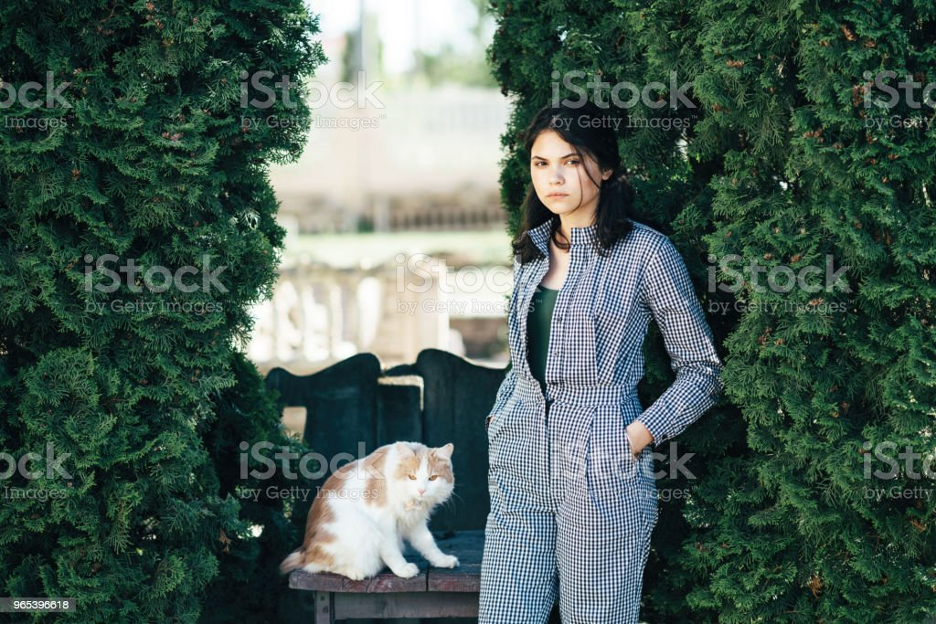 The cat is sitting on the chair, and the girl stands next to the background of green bushes zbiór zdjęć royalty-free