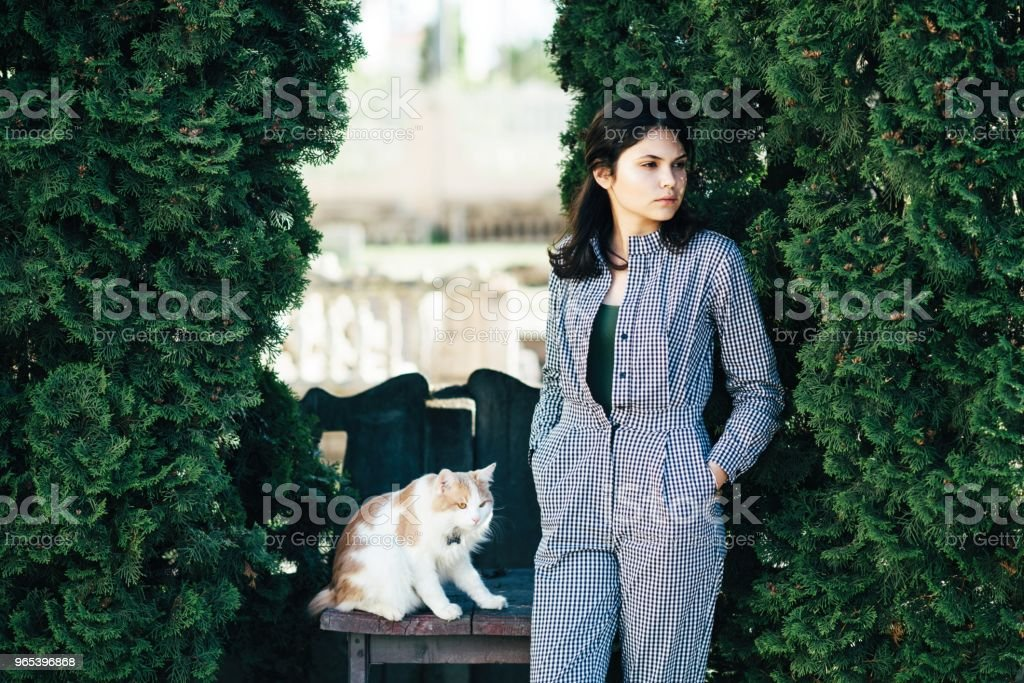 The cat is sitting on the chair, and the girl stands next to the background of green bushes royalty-free stock photo