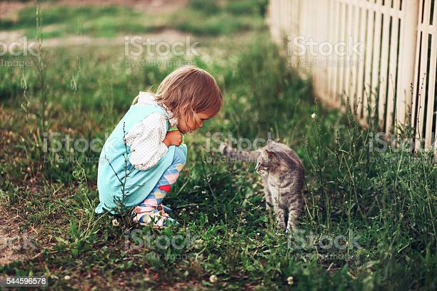 The cat walk picture id544596578?b=1&k=6&m=544596578&s=612x612&h=rbm1wqcly71oxrrktnyoikuq3 fc9tfvklvlu dwhc8=