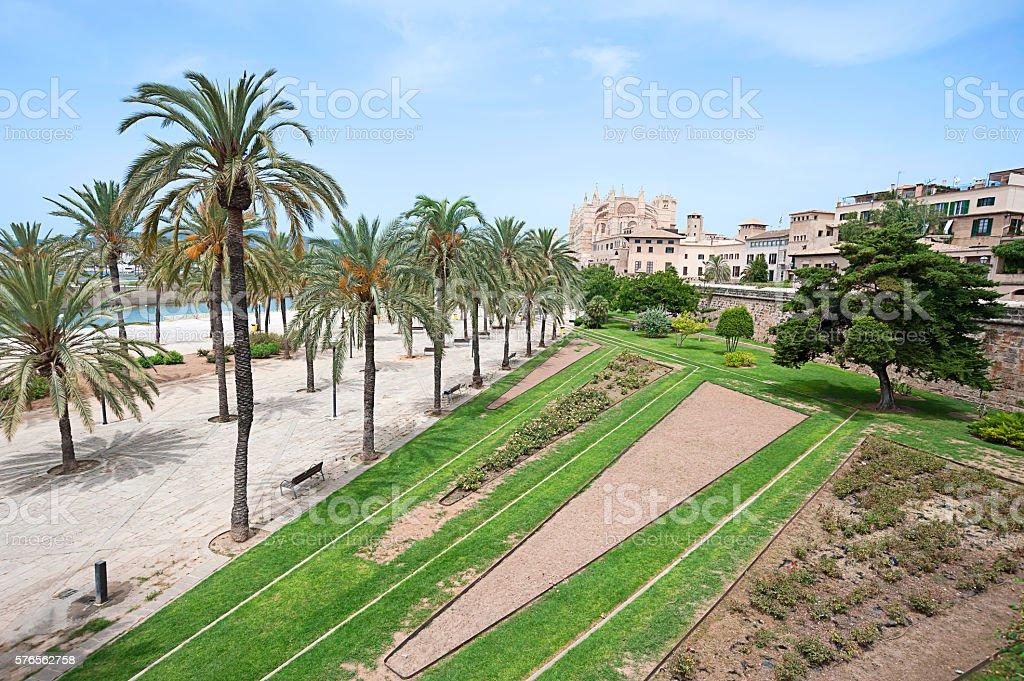 Tiedosto:Palma de Mallorca. XX}} |Source ={{own}} |Author =José Luis Filpo Cabana |Date =Marzo 2012 |Permission = |other_versions = }} [[Category:Squa.