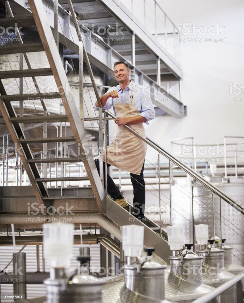 The cellar is his domain royalty-free stock photo