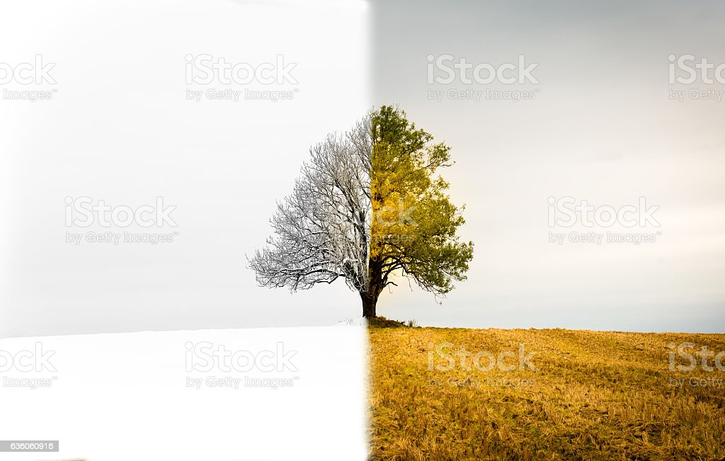 The change between seasons stock photo