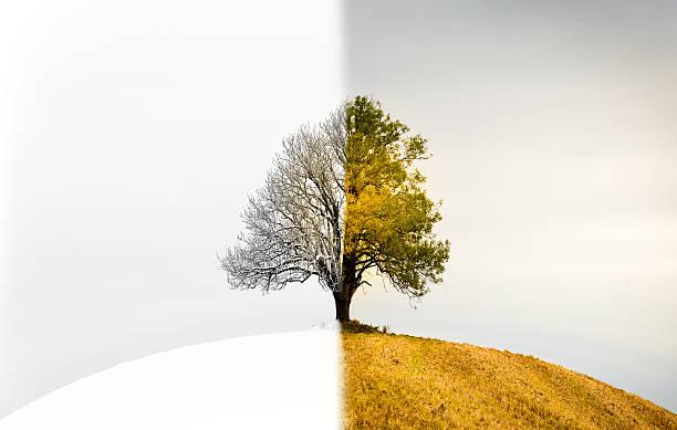 The change between seasons - foto de stock
