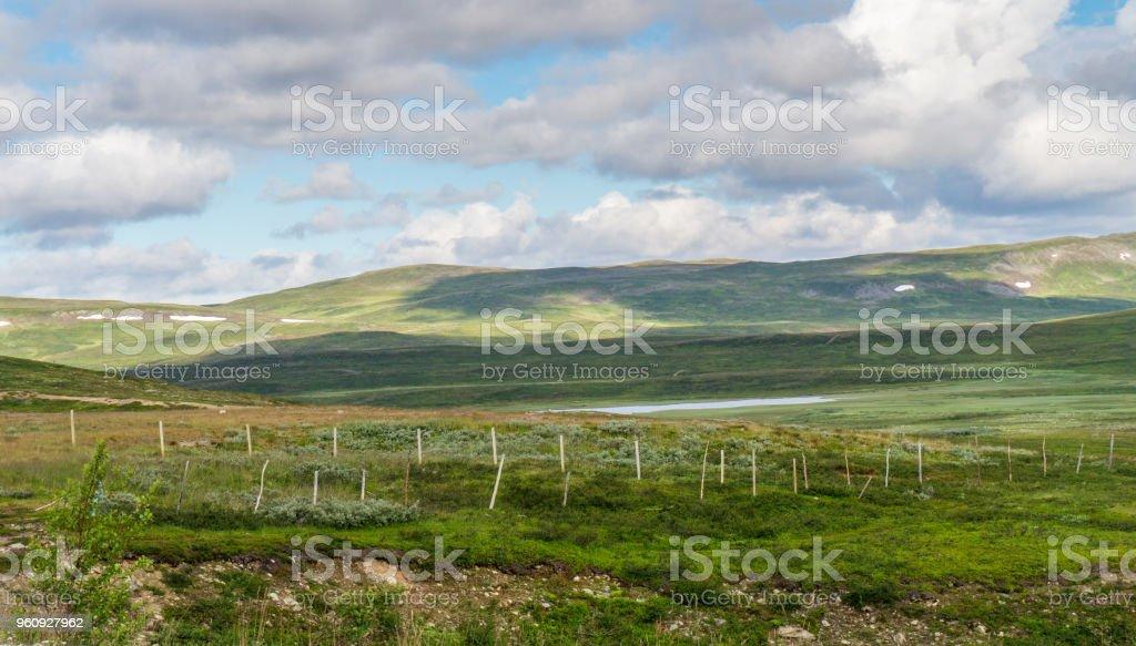 Die charakteristische Landschaft der arktischen Tundra im Sommer, Norwegen - Lizenzfrei Anhöhe Stock-Foto