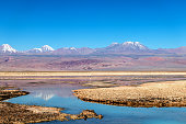 Beautiful landscape of the Chaxa Lake (Laguna Chaxa) with reflection of surroundings and blue sky in Salar of Atacama, Chile
