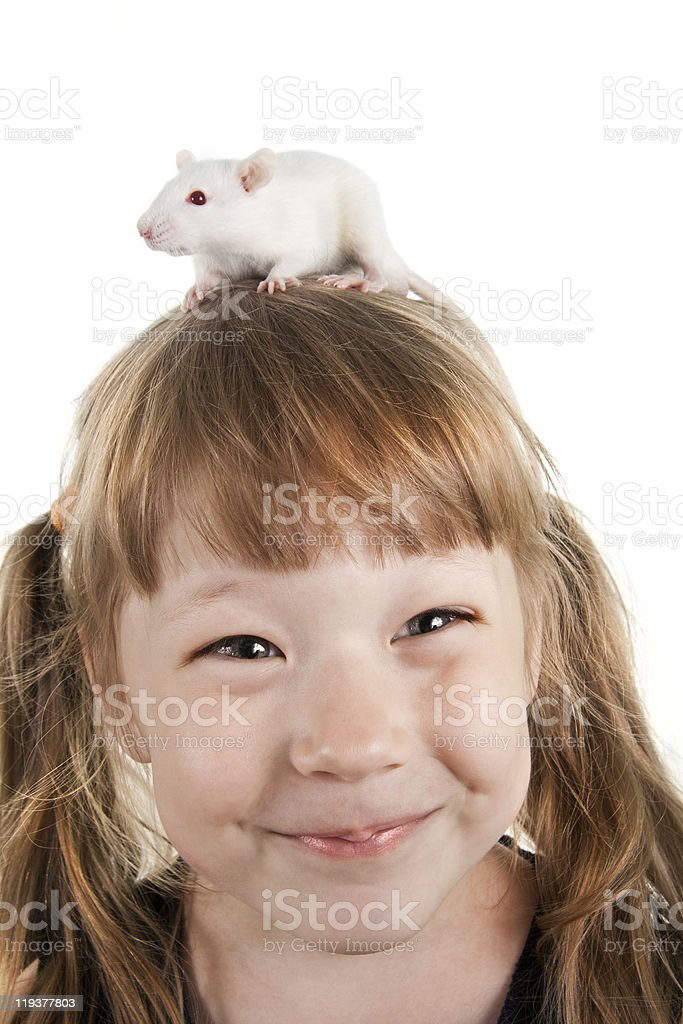 The cheerful girl with a rat on her head royalty-free stock photo