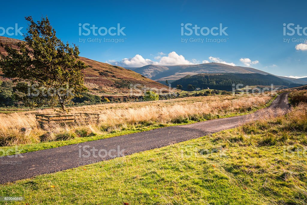The Cheviot and College Valley stock photo
