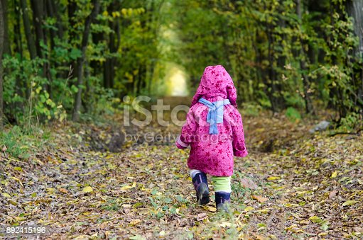 istock The child is walking in the autumn forest. View from the back 892415196