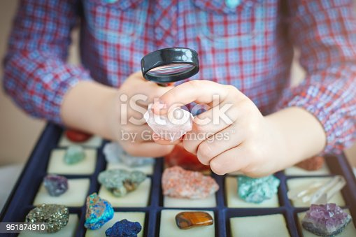 The child looks at his collection of minerals. The little geologist