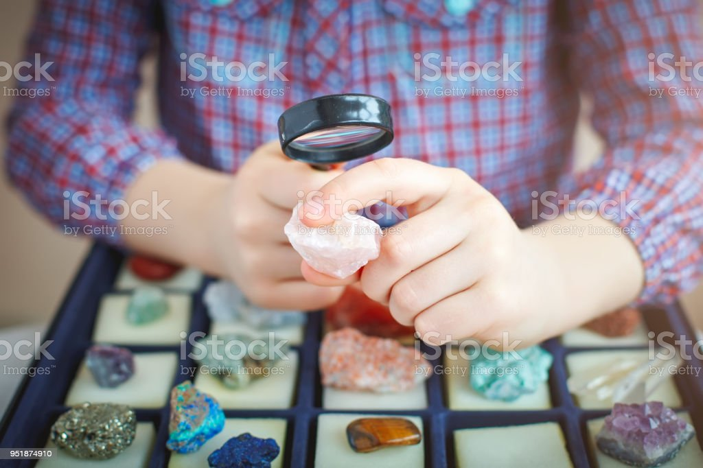 The child looks at his collection of minerals. The little geologist. stock photo