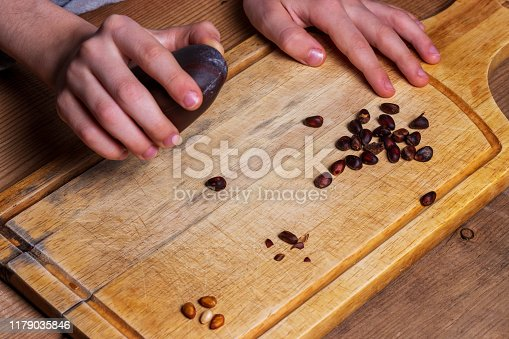 The child removes the cedar nut kernel from the shell. Hand holds a black stone. Inshell Siberian pine nuts on the background of a wooden board from givei.