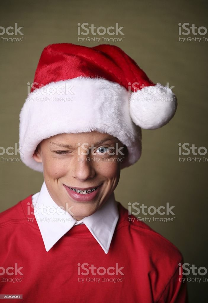 the christmas grinch royalty-free stock photo