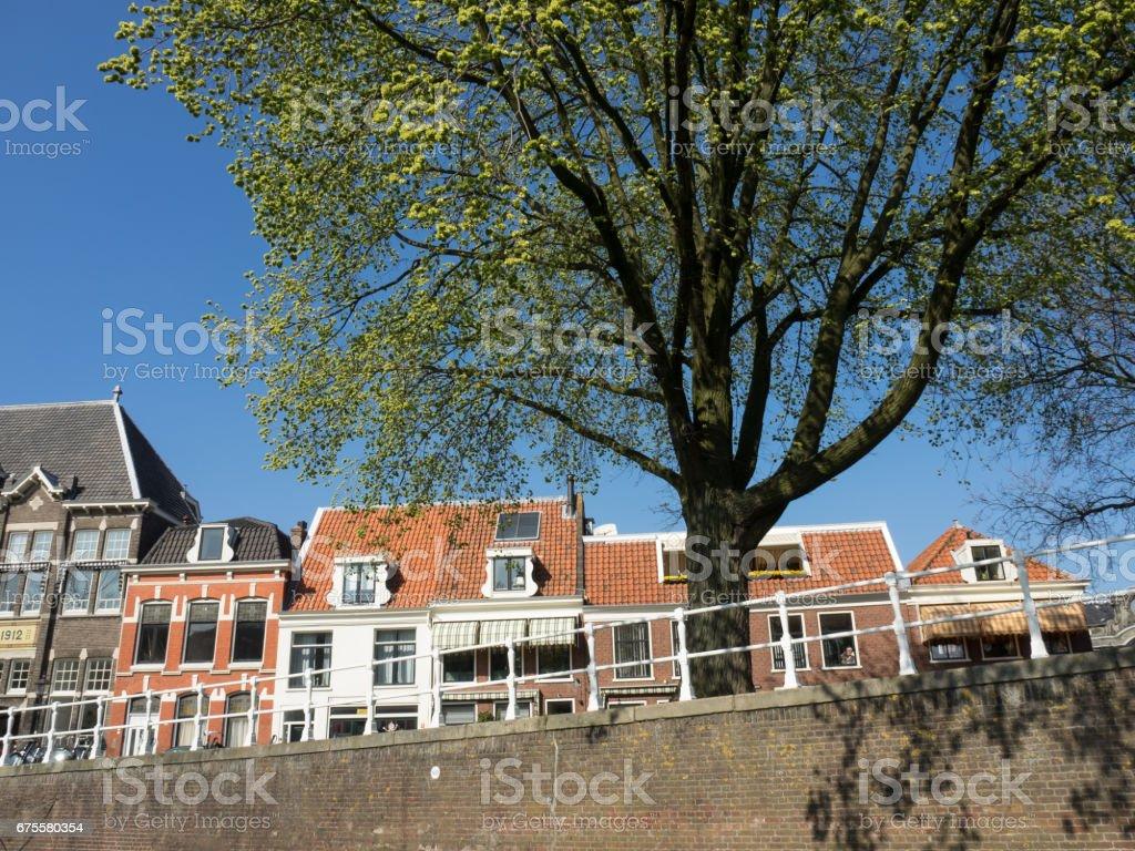 the city of haarlem photo libre de droits