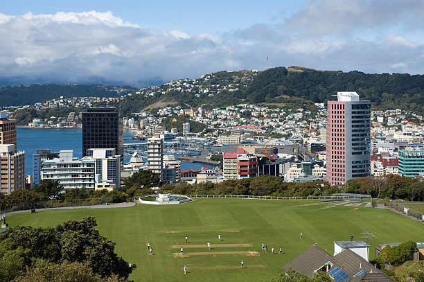 The City of Wellington From the top of the Cable Car towards Mt. Victoria mt victoria canadian rockies stock pictures, royalty-free photos & images