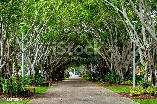 istock The cityscape, Cairns esplanade park, Australia. 1213370940