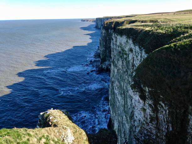 the cliffs and the north sea - mcdermp stock photos and pictures