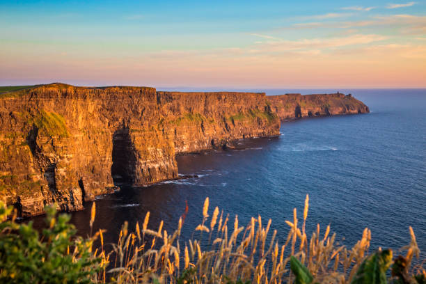 The Cliffs of Moher The Cliffs of Moher, County Clare, Ireland cliffs of moher stock pictures, royalty-free photos & images