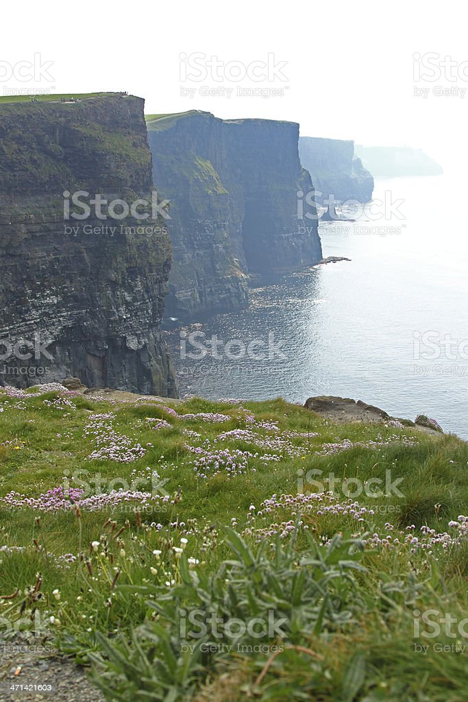 The Cliffs of Moher royalty-free stock photo