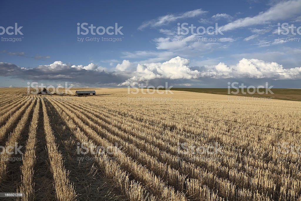 The clouds over fields royalty-free stock photo