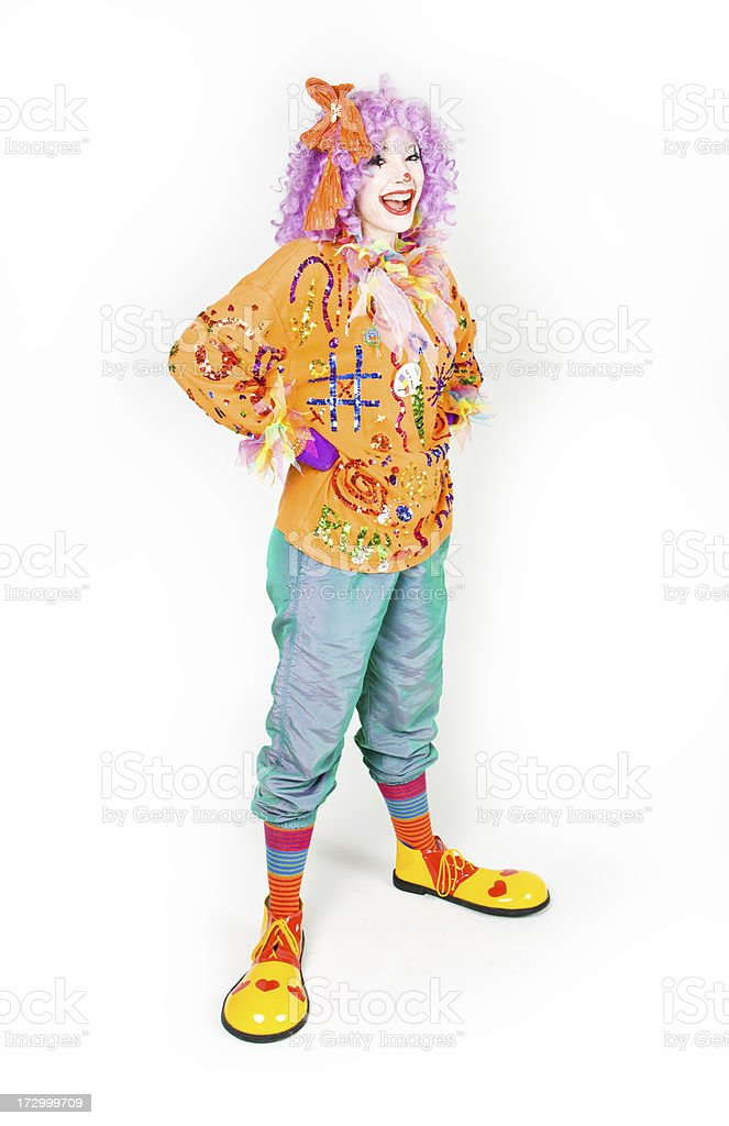 The clown royalty-free stock photo