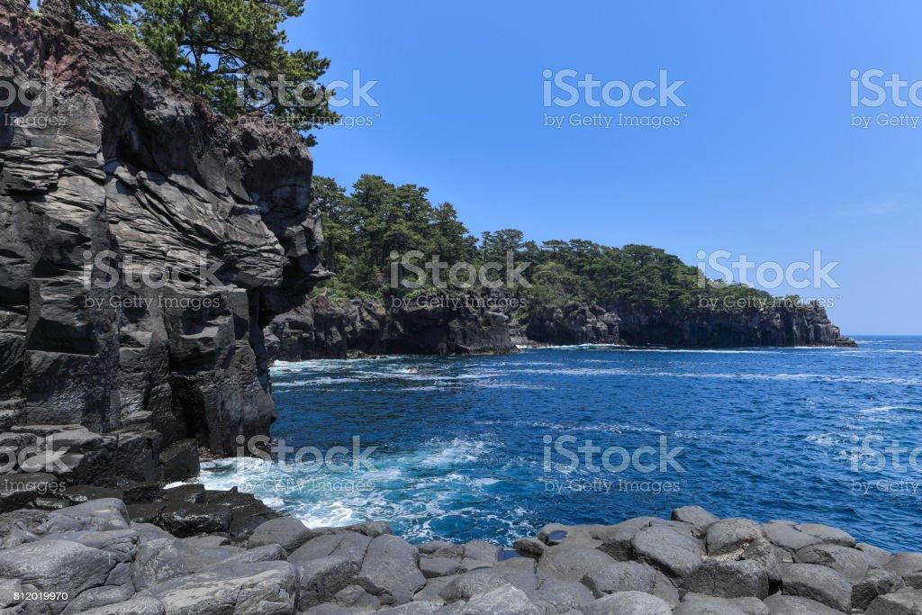 日本の海岸。 ストックフォト