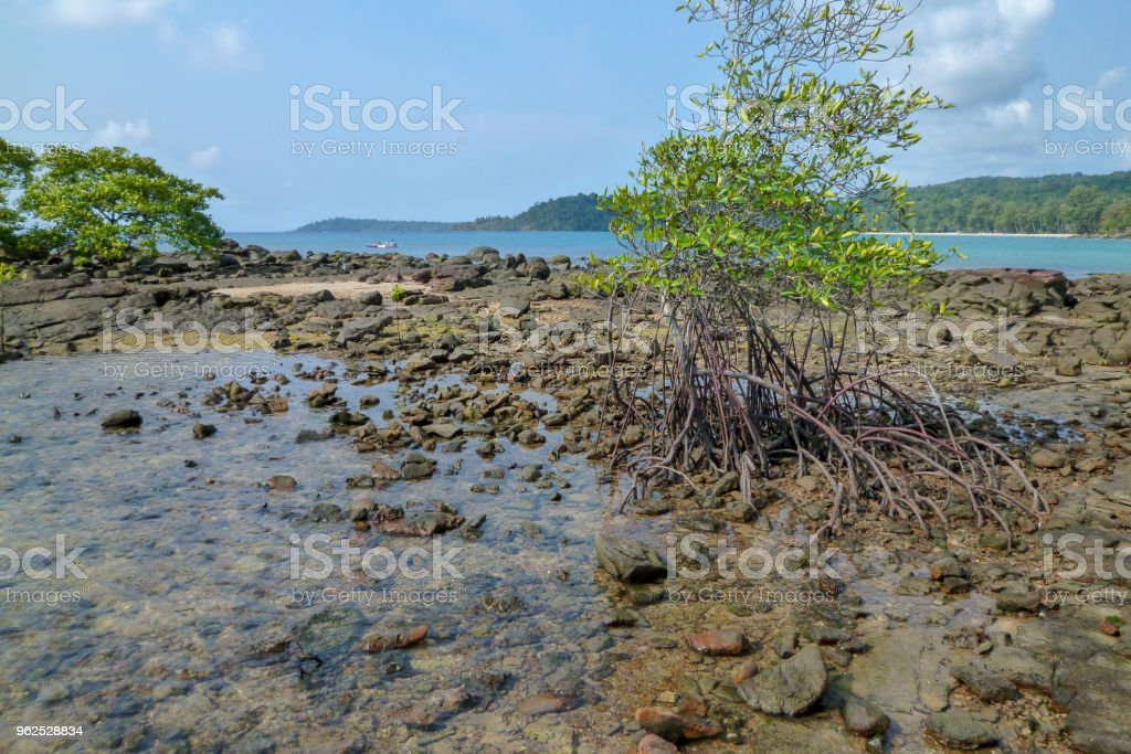 The coast of Koh Kood island - Royalty-free Asia Stock Photo