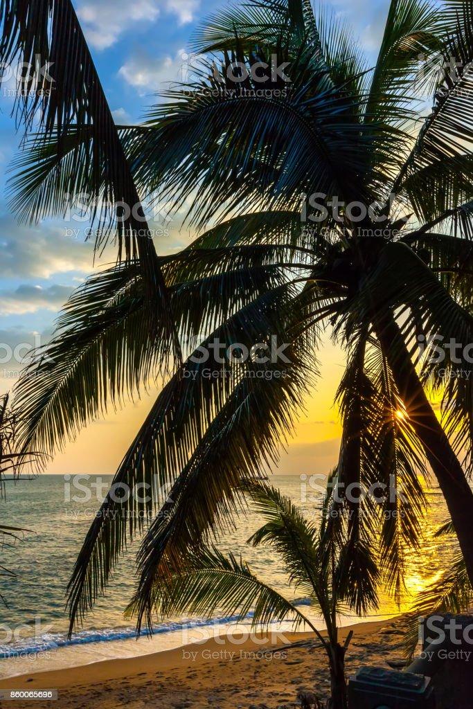 The coast of Sanya Island. stock photo
