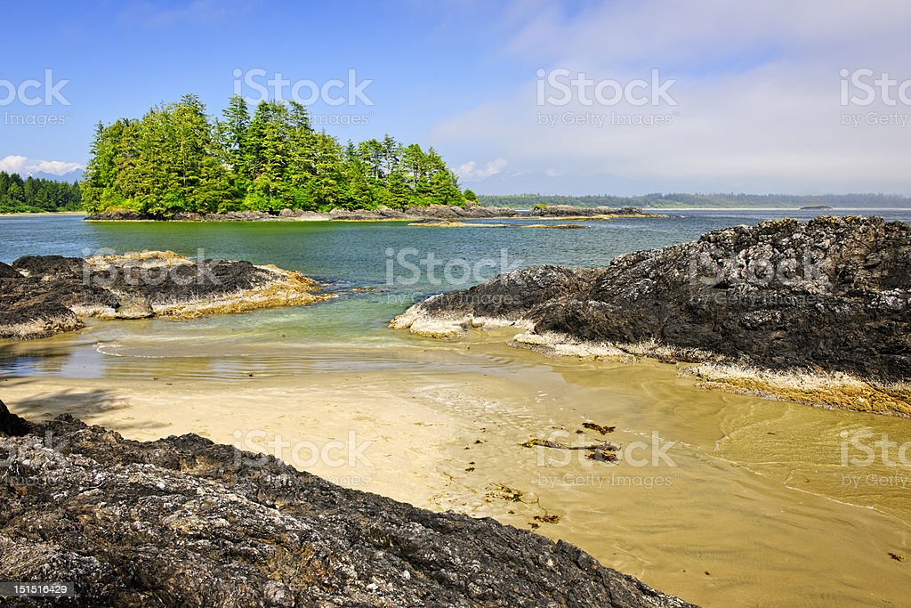 The coast of the Pacific ocean, Vancouver Island, Canada stock photo