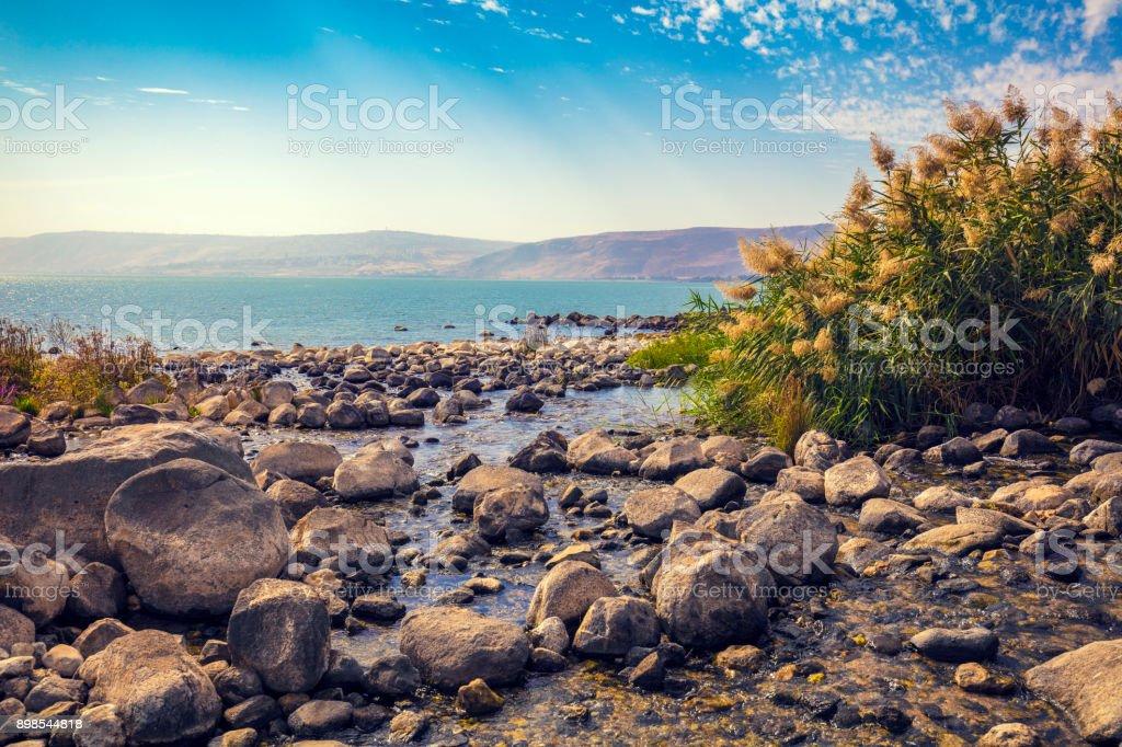 Der Küste des Meeres von Galiläa in der Nähe Ein Eyov Wasserfall in Tabgha, Israel – Foto