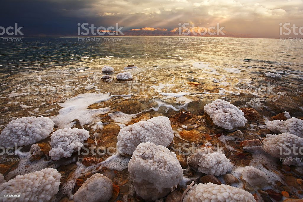The coastal stones and salty adjournment royalty-free stock photo