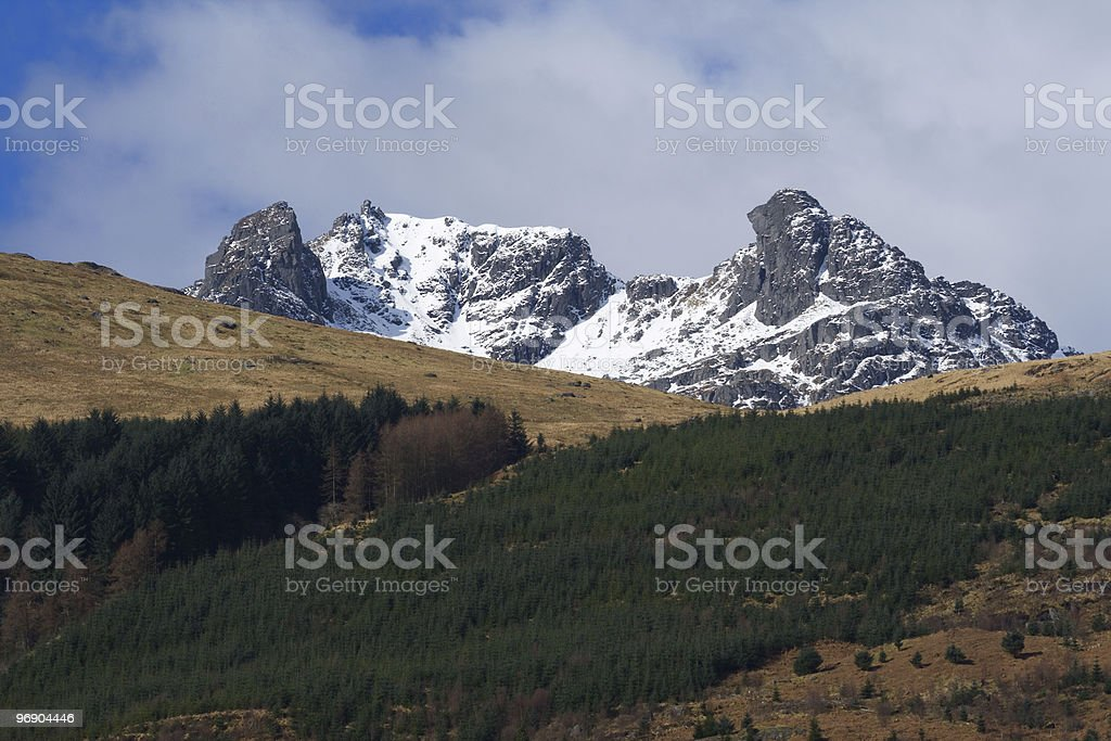 the cobbler royalty-free stock photo