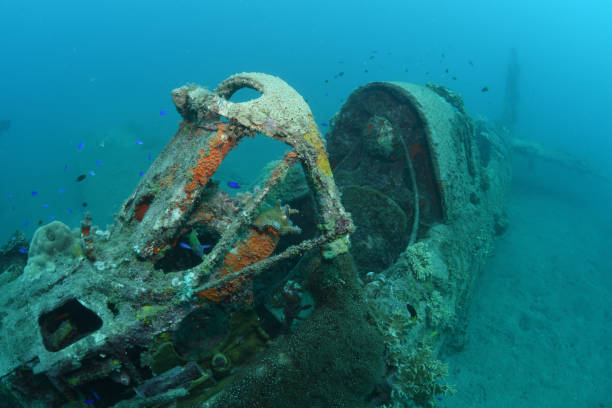 The cockpit of a Douglas SBD-4 Dauntless Dive Bomber plane wreck, Munda, Solomon Islands
