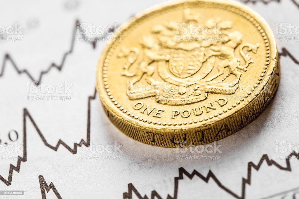 The coin one pound on graphics background stock photo
