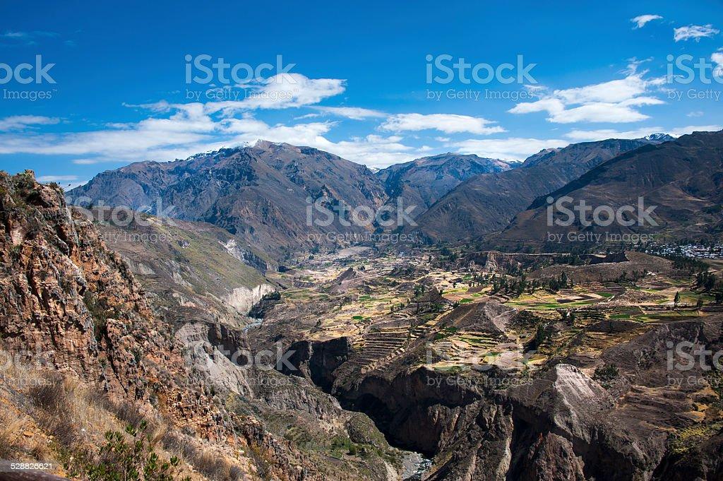 The Colca Canyon stock photo