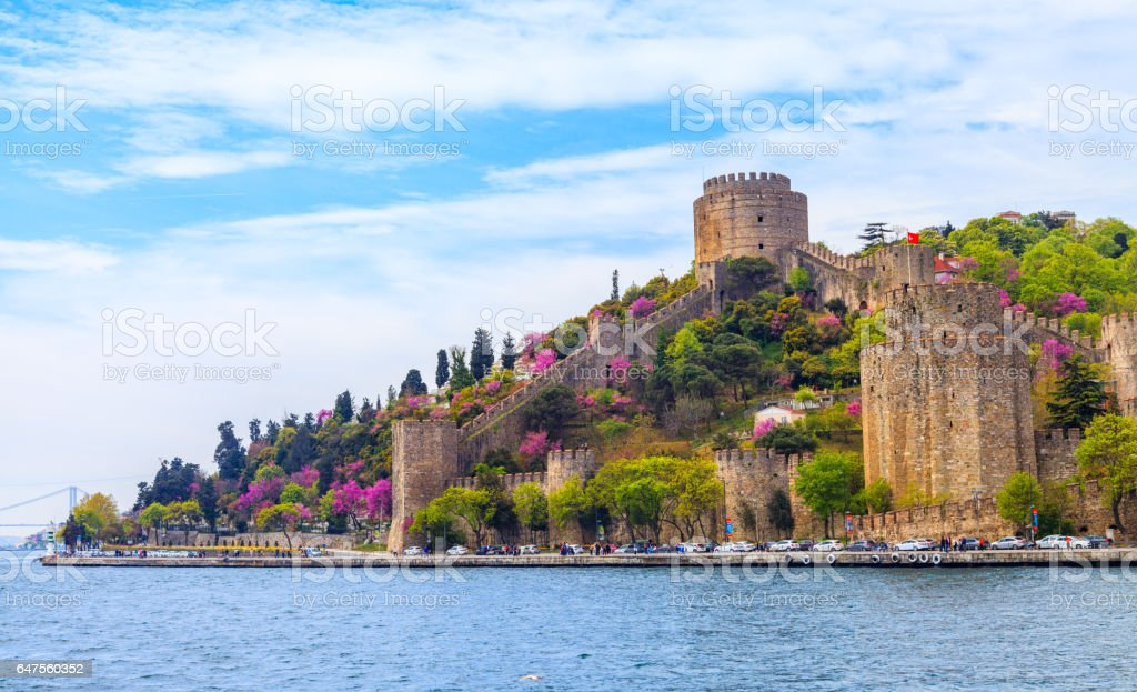 The Color Of Istanbul Erguvan, Judas Tree or Redbud stock photo