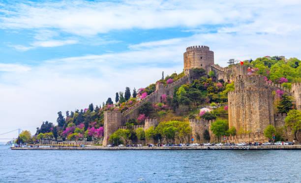 The Color Of Istanbul Erguvan, Judas Tree or Redbud stock photo