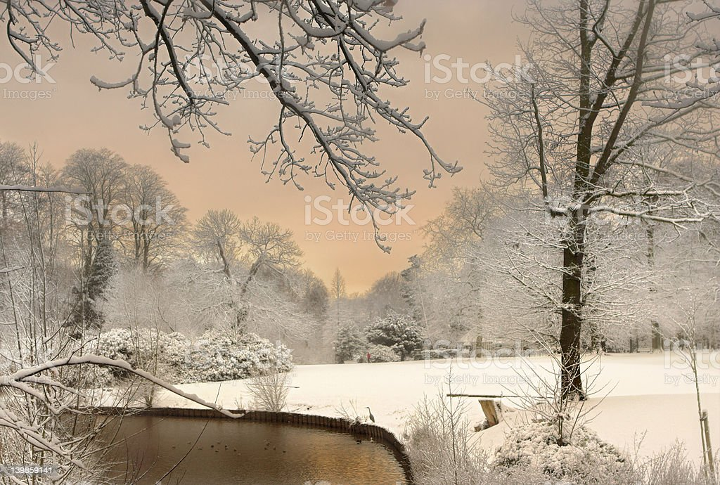 The Colors of Snow royalty-free stock photo