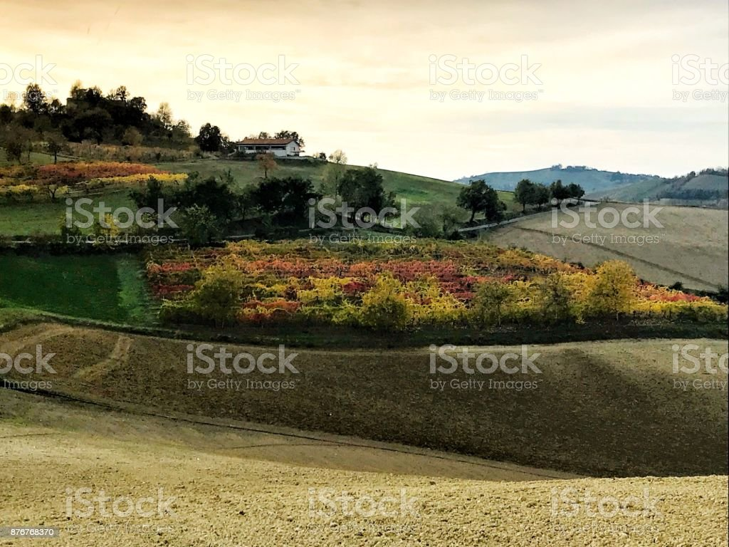 The colors of vineyards and hills in the autumn around Maranello stock photo